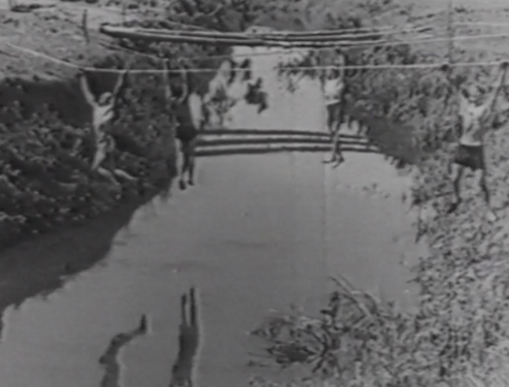 Jóvenes alemanes cruzando un rio colgados de cuerdas como parte de una pista de obstáculos.